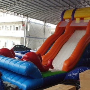 Inflatable Slide Dolphin 10m on 4m