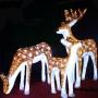 LED light christmas decoration
