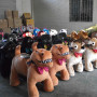 Animal kids ride , Animal electric battery ride