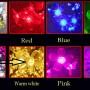 bulb color order