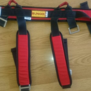 harness for mobile bungee